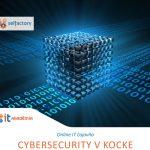 """Pozvánka do Online IT Čajovne s témou """"Cybersecurity v kocke."""" pre žiakov 2. stupňa"""