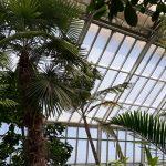 Návšteva Botanickej záhrady